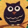Owl doormats